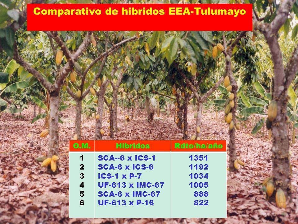 Comparativo de hibridos EEA-Tulumayo O.M.HibridosRdto/ha/año 123456123456 SCA--6 x ICS-1 SCA-6 x ICS-6 ICS-1 x P-7 UF-613 x IMC-67 SCA-6 x IMC-67 UF-6