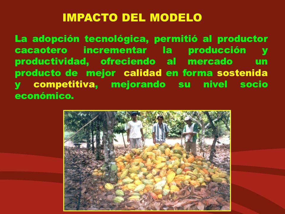 La adopción tecnológica, permitió al productor cacaotero incrementar la producción y productividad, ofreciendo al mercado un producto de mejor calidad