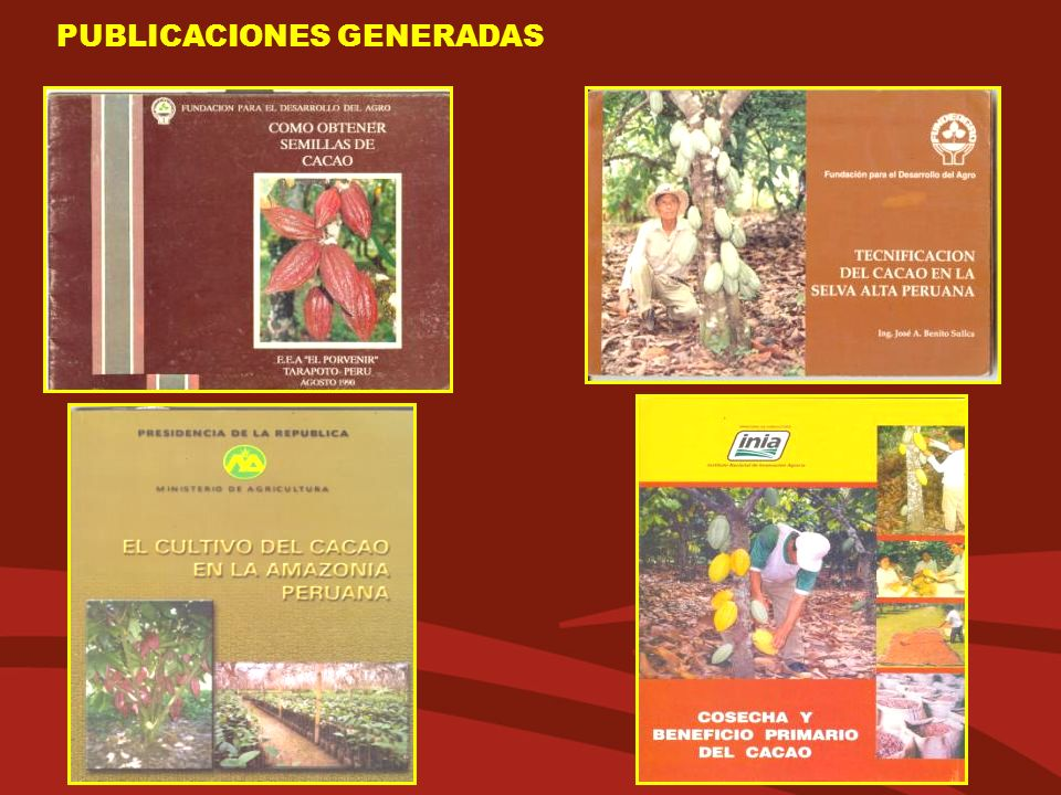 PUBLICACIONES GENERADAS