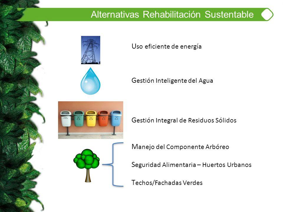 U so eficiente de energía G estión Inteligente del Agua G estión Integral de Residuos Sólidos M anejo del Componente Arbóreo S eguridad Alimentaria –