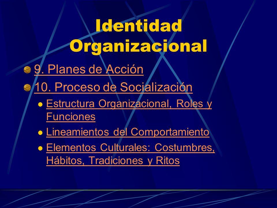 Identidad Organizacional 9. Planes de Acción 10. Proceso de Socialización Estructura Organizacional, Roles y Funciones Estructura Organizacional, Role