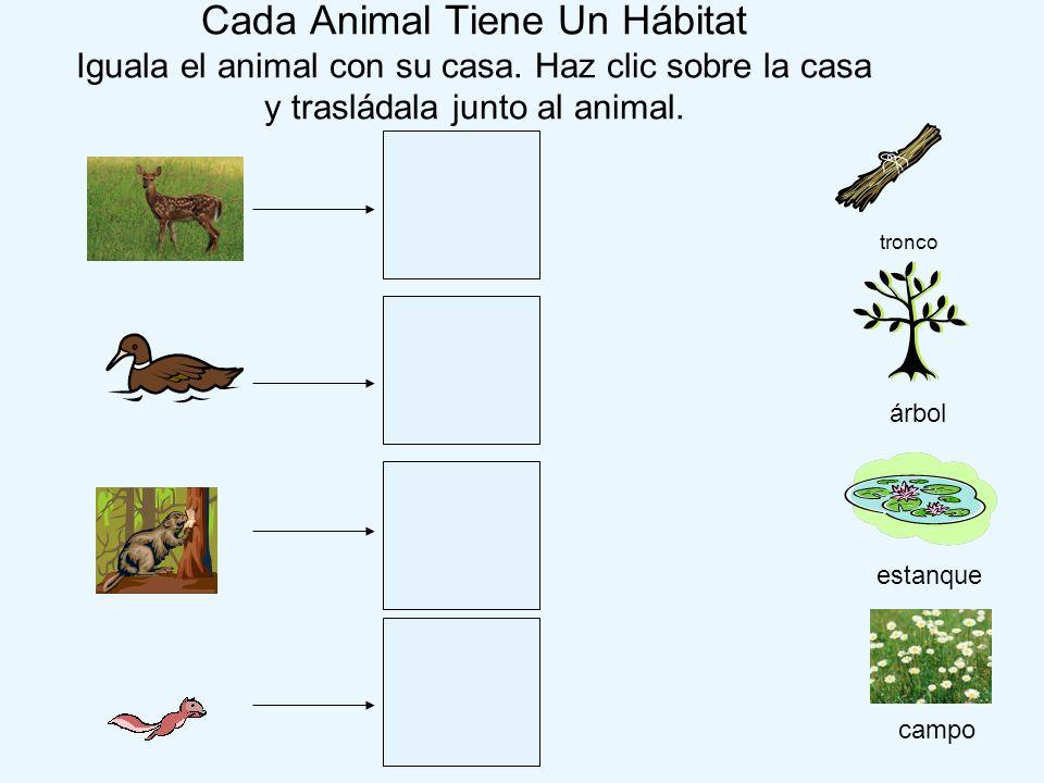 Cada Animal Tiene Un Hábitat Iguala el animal con su casa. Haz clic sobre la casa y trasládala junto al animal. campo estanque tronco árbol