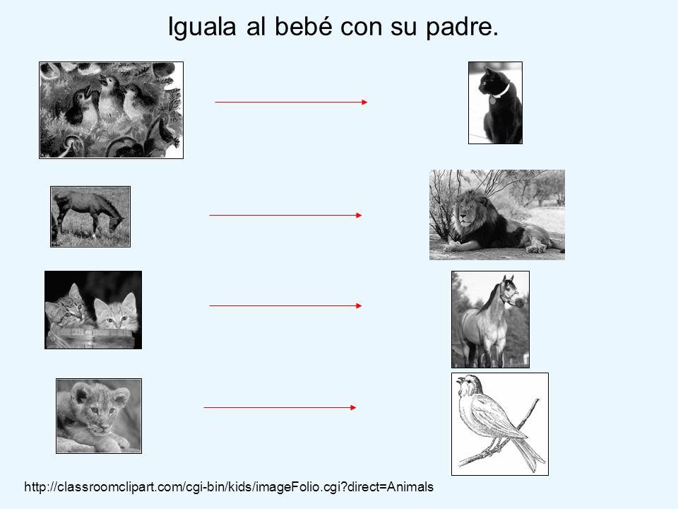 Iguala al bebé con su padre. http://classroomclipart.com/cgi-bin/kids/imageFolio.cgi?direct=Animals