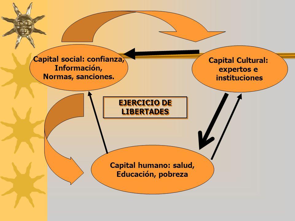 Capital social: confianza, Información, Normas, sanciones. Capital Cultural: expertos e instituciones Capital humano: salud, Educación, pobreza EJERCI