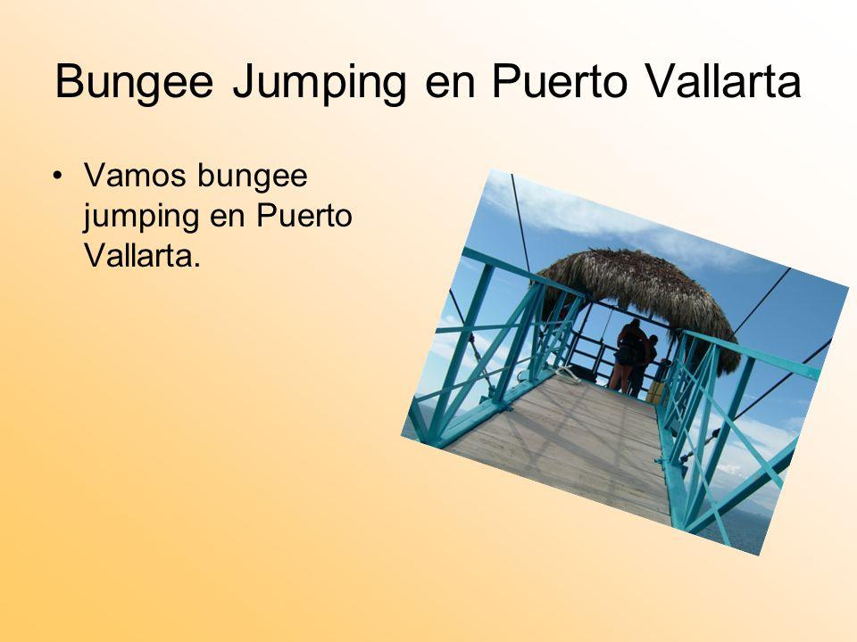 Bungee Jumping en Puerto Vallarta Vamos bungee jumping en Puerto Vallarta.