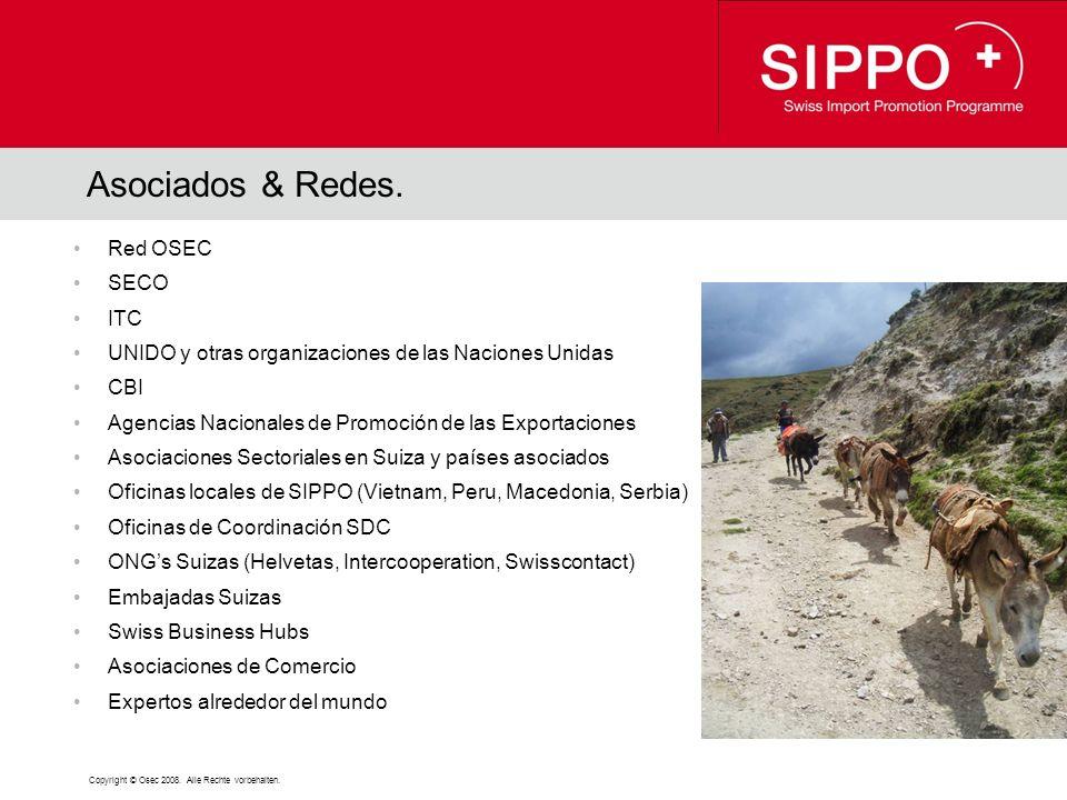 Copyright © Osec 2008. Alle Rechte vorbehalten. Asociados & Redes.