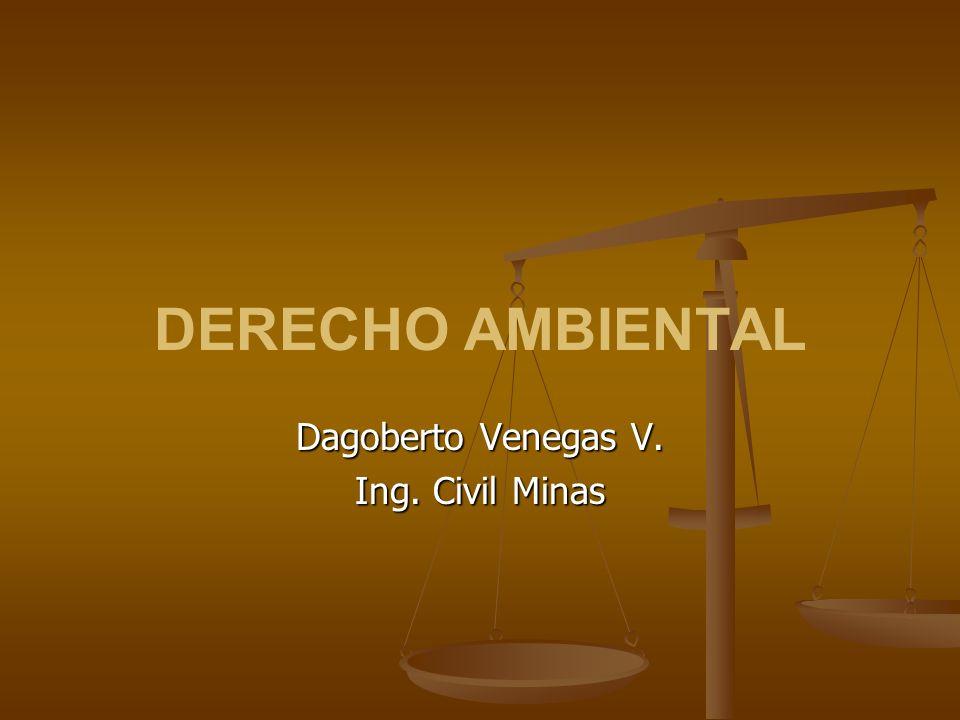 DERECHO AMBIENTAL Dagoberto Venegas V. Ing. Civil Minas