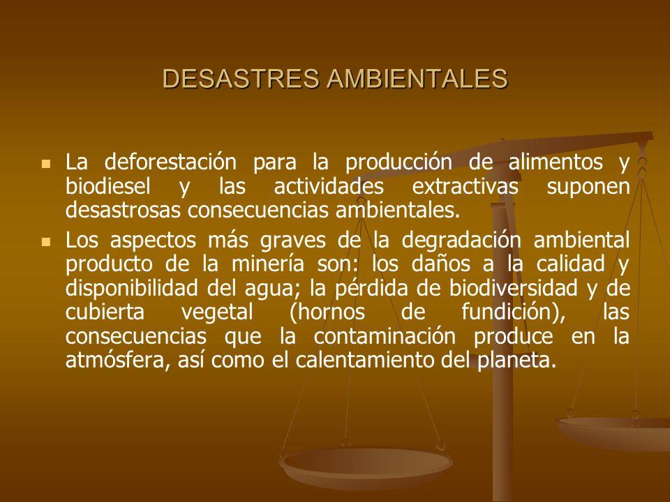 DESASTRES AMBIENTALES La deforestación para la producción de alimentos y biodiesel y las actividades extractivas suponen desastrosas consecuencias amb