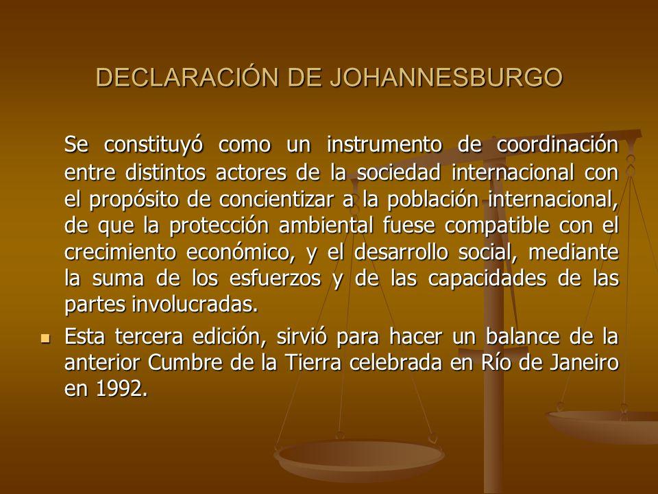 DECLARACIÓN DE JOHANNESBURGO Se constituyó como un instrumento de coordinación entre distintos actores de la sociedad internacional con el propósito d