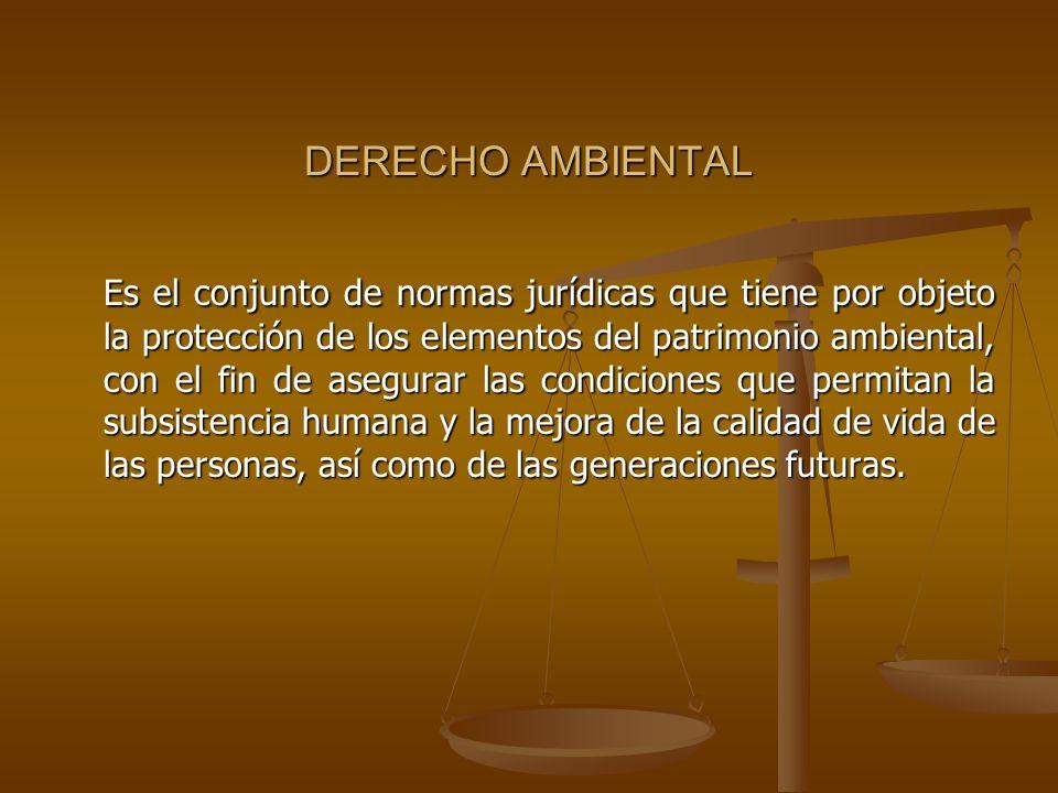 DERECHO AMBIENTAL Es el conjunto de normas jurídicas que tiene por objeto la protección de los elementos del patrimonio ambiental, con el fin de asegu