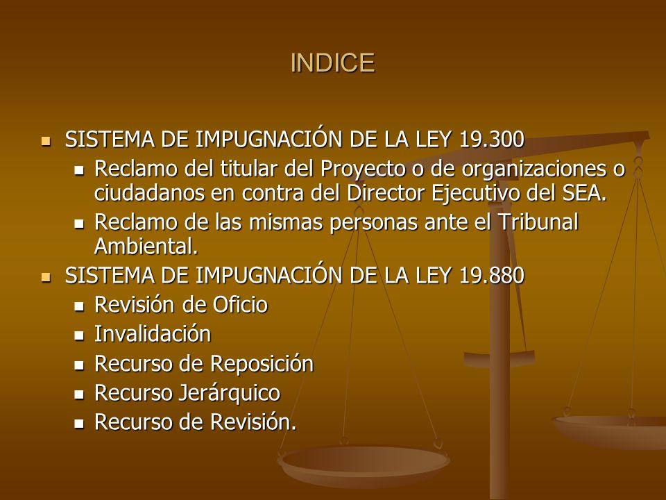 INDICE SISTEMA DE IMPUGNACIÓN DE LA LEY 19.300 SISTEMA DE IMPUGNACIÓN DE LA LEY 19.300 Reclamo del titular del Proyecto o de organizaciones o ciudadan