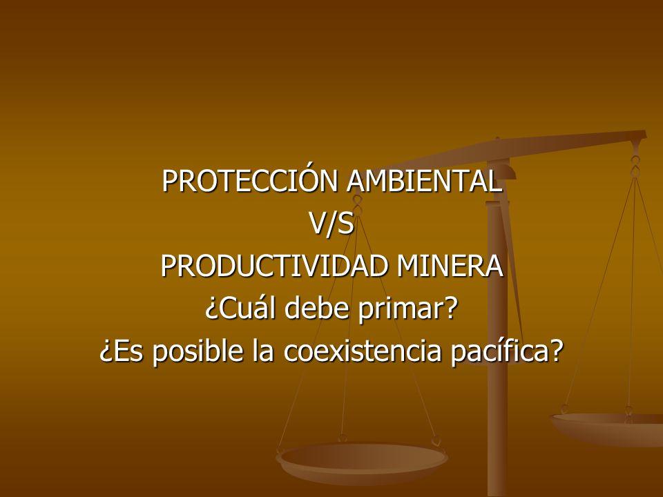 PROTECCIÓN AMBIENTAL V/S PRODUCTIVIDAD MINERA ¿Cuál debe primar? ¿Es posible la coexistencia pacífica?