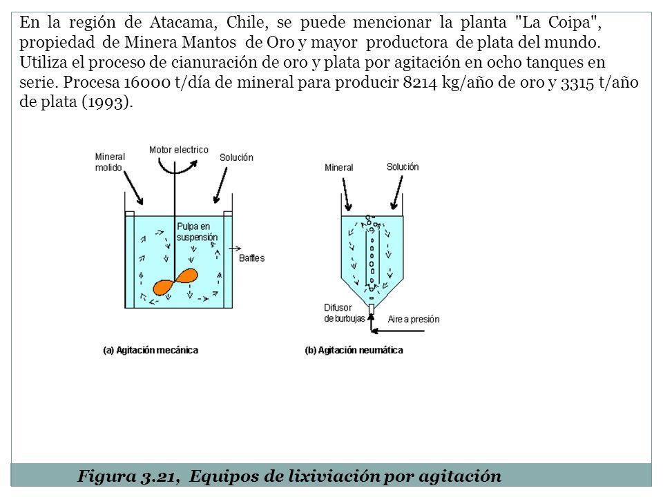 En la región de Atacama, Chile, se puede mencionar la planta