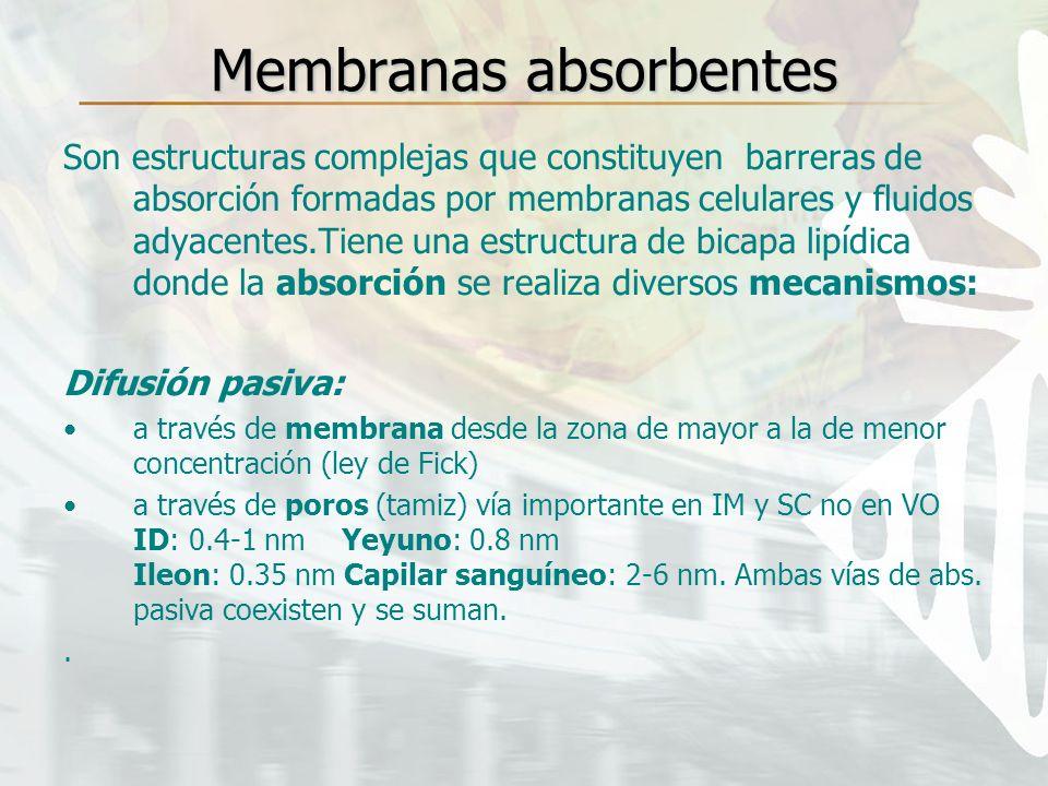 Membranas absorbentes Son estructuras complejas que constituyen barreras de absorción formadas por membranas celulares y fluidos adyacentes.Tiene una