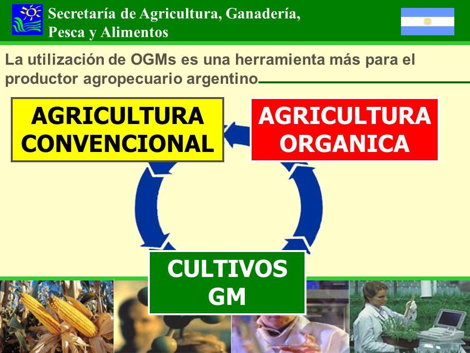 La utilización de OGMs es una herramienta más para el productor agropecuario argentino AGRICULTURA ORGANICA AGRICULTURA CONVENCIONAL Secretaría de Agr