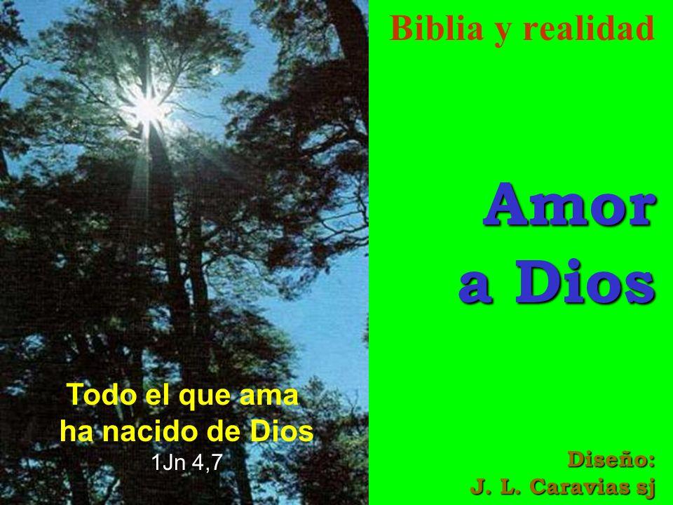 Biblia y realidadAmor a Dios Diseño: J. L. Caravias sj Todo el que ama ha nacido de Dios 1Jn 4,7