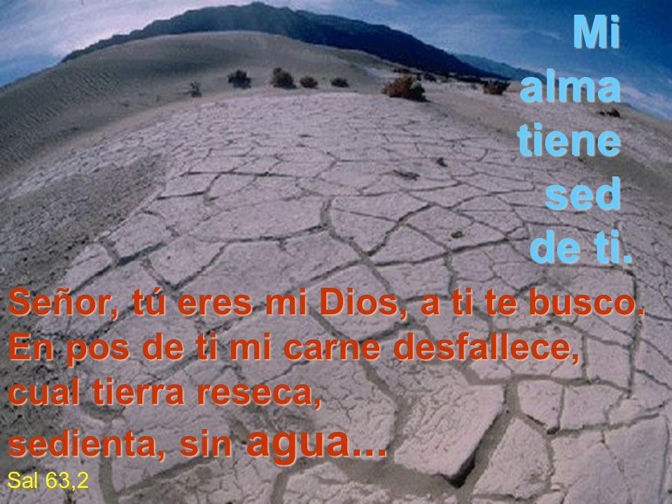 Señor, tú eres mi Dios, a ti te busco. En pos de ti mi carne desfallece, cual tierra reseca, sedienta, sin sin agua... Sal 63,2 Mi alma tiene sed de t