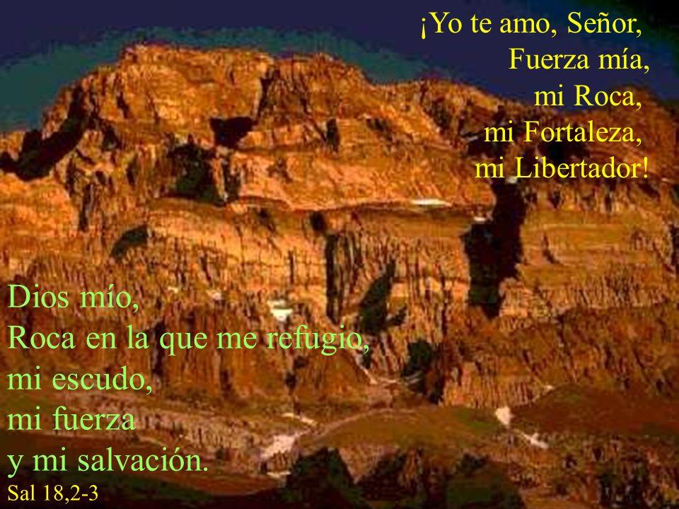¡Yo te amo, Señor, Fuerza mía, mi Roca, mi Fortaleza, mi Libertador! Dios mío, Roca en la que me refugio, mi escudo, mi fuerza y mi salvación. Sal 18,