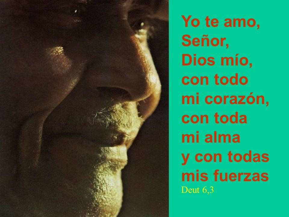 Yo te amo, Señor, Dios mío, con todo mi corazón, con toda mi alma y con todas mis fuerzas Deut 6,3