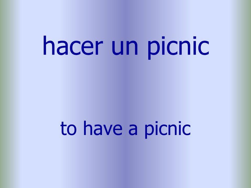 hacer un picnic to have a picnic