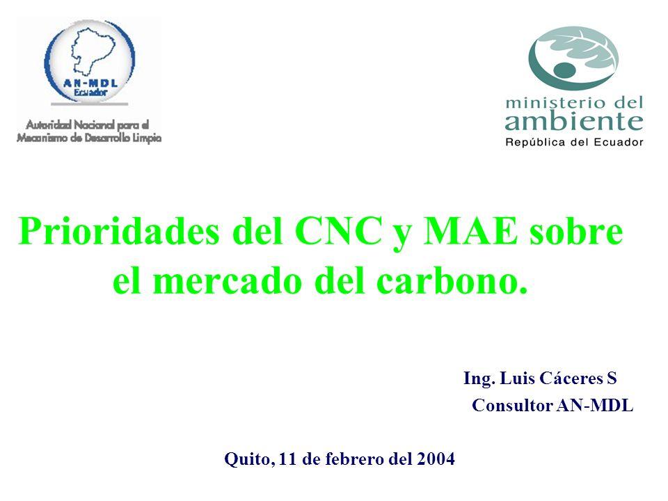 Prioridades del CNC y MAE sobre el mercado del carbono.