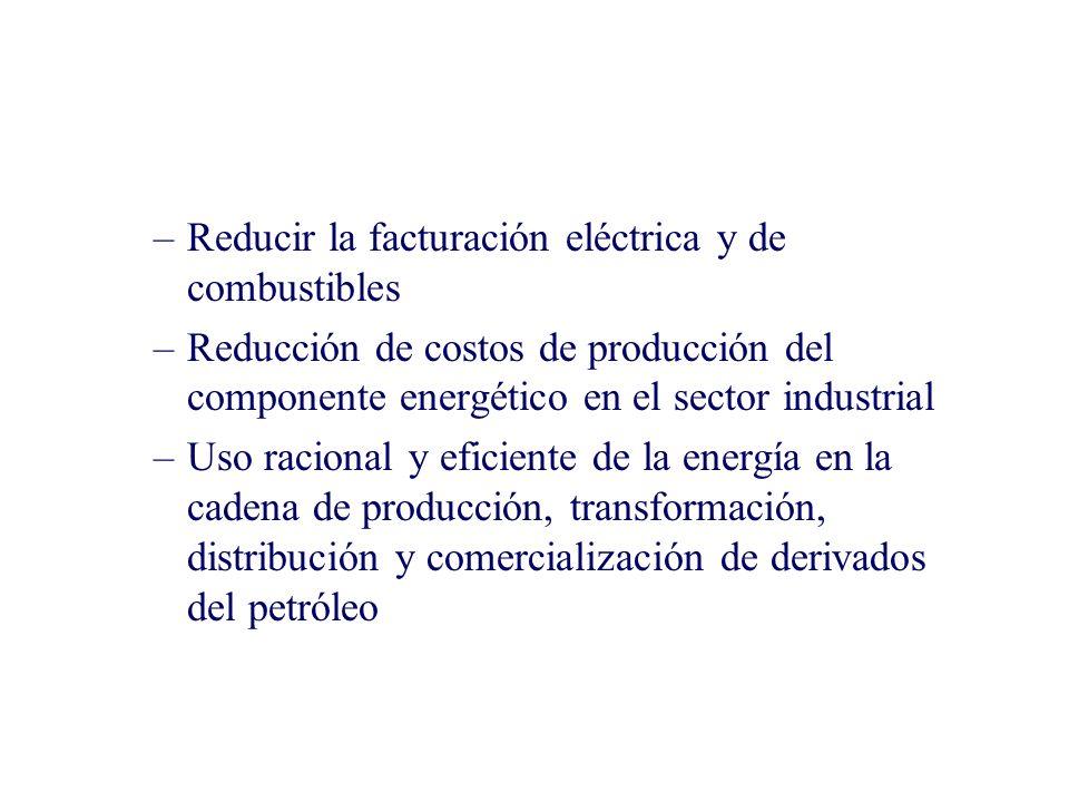 –Reducir la facturación eléctrica y de combustibles –Reducción de costos de producción del componente energético en el sector industrial –Uso racional y eficiente de la energía en la cadena de producción, transformación, distribución y comercialización de derivados del petróleo