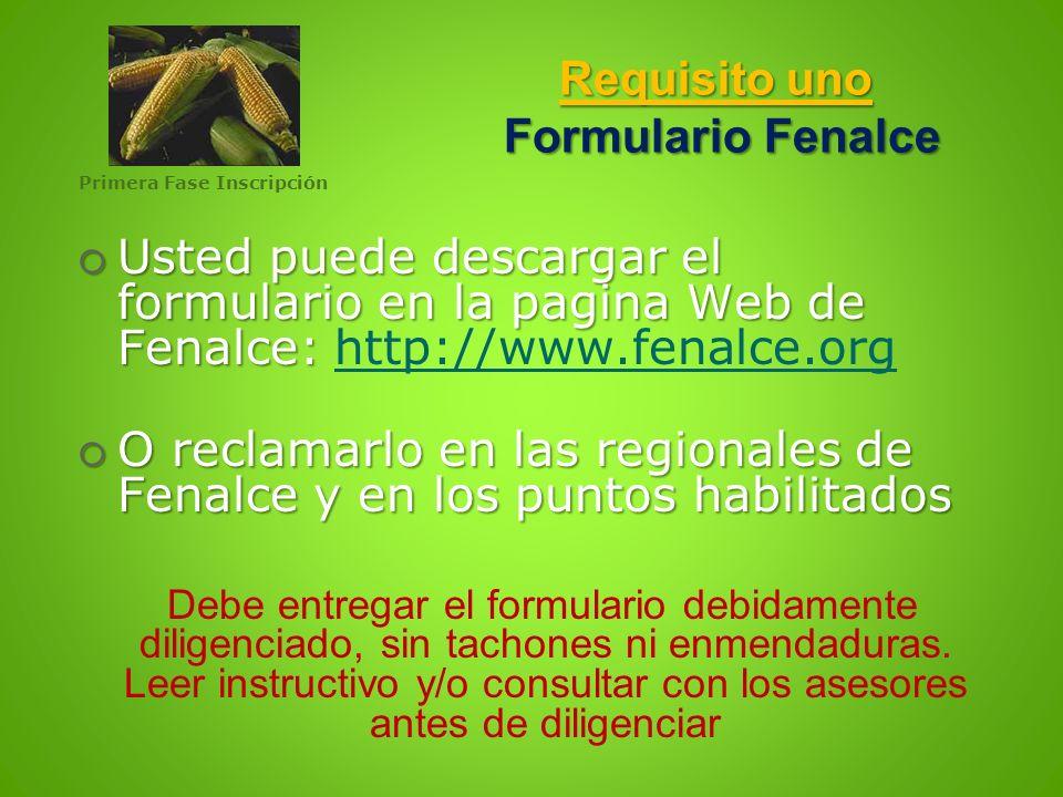 Requisito uno Formulario Fenalce Usted puede descargar el formulario en la pagina Web de Fenalce: Usted puede descargar el formulario en la pagina Web