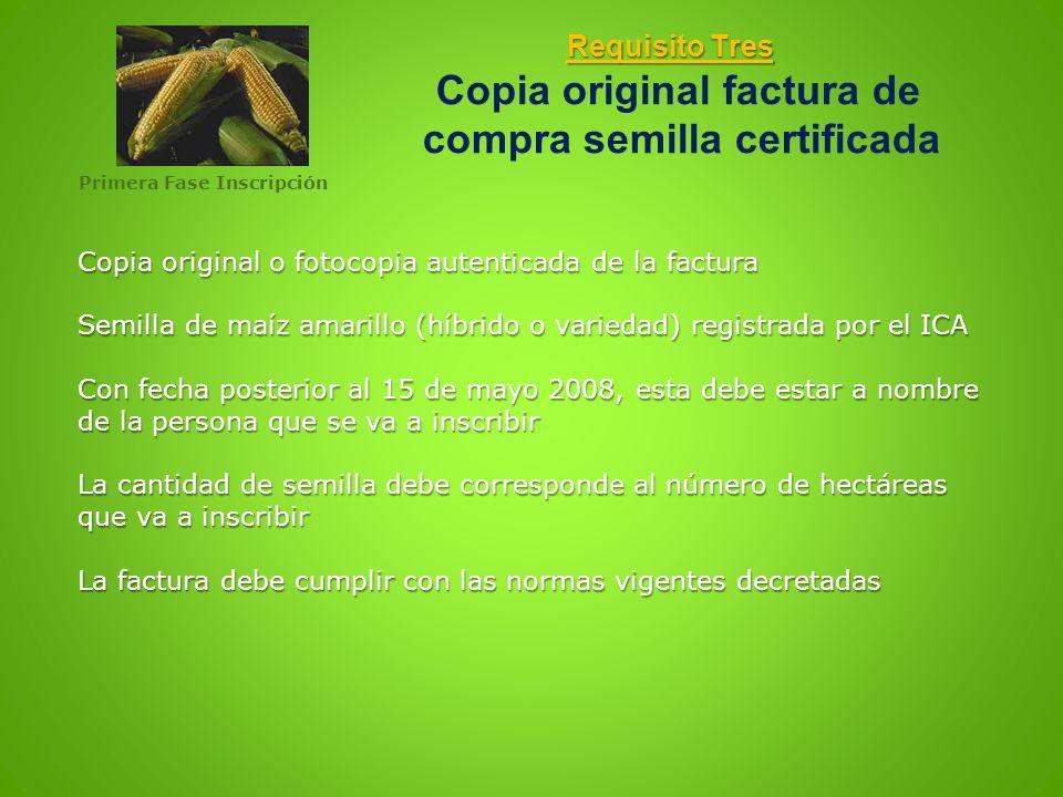 Requisito Tres Requisito Tres Copia original factura de compra semilla certificada Copia original o fotocopia autenticada de la factura Semilla de maí