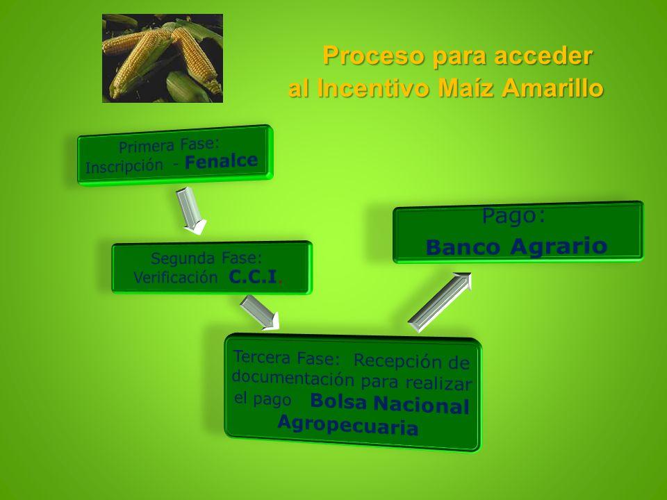 Proceso para acceder al Incentivo Maíz Amarillo