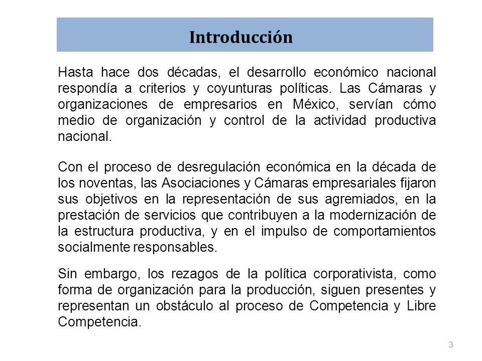 Introducción Hasta hace dos décadas, el desarrollo económico nacional respondía a criterios y coyunturas políticas. Las Cámaras y organizaciones de em