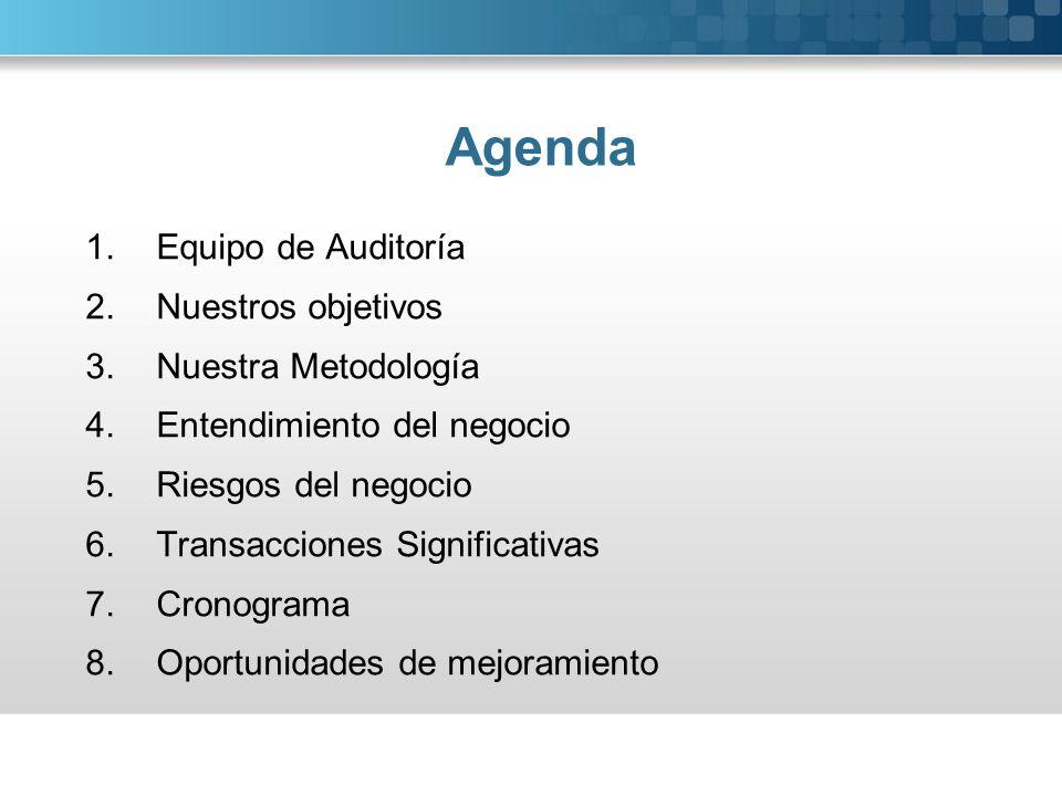 Agenda 1.Equipo de Auditoría 2.Nuestros objetivos 3.Nuestra Metodología 4.Entendimiento del negocio 5.Riesgos del negocio 6.Transacciones Significativ