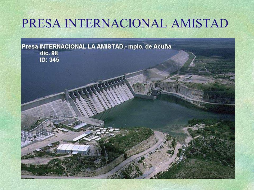 PRESA INTERNACIONAL AMISTAD
