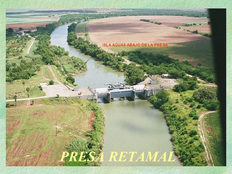 PRESA RETAMAL ISLA AGUAS ABAJO DE LA PRESA