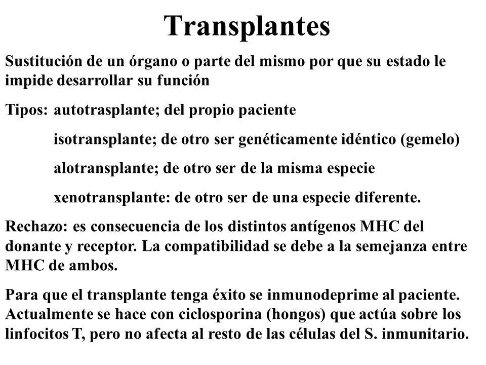 Transplantes Sustitución de un órgano o parte del mismo por que su estado le impide desarrollar su función Tipos:autotrasplante; del propio paciente i