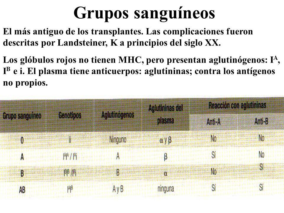 Grupos sanguíneos El más antiguo de los transplantes. Las complicaciones fueron descritas por Landsteiner, K a principios del siglo XX. Los glóbulos r