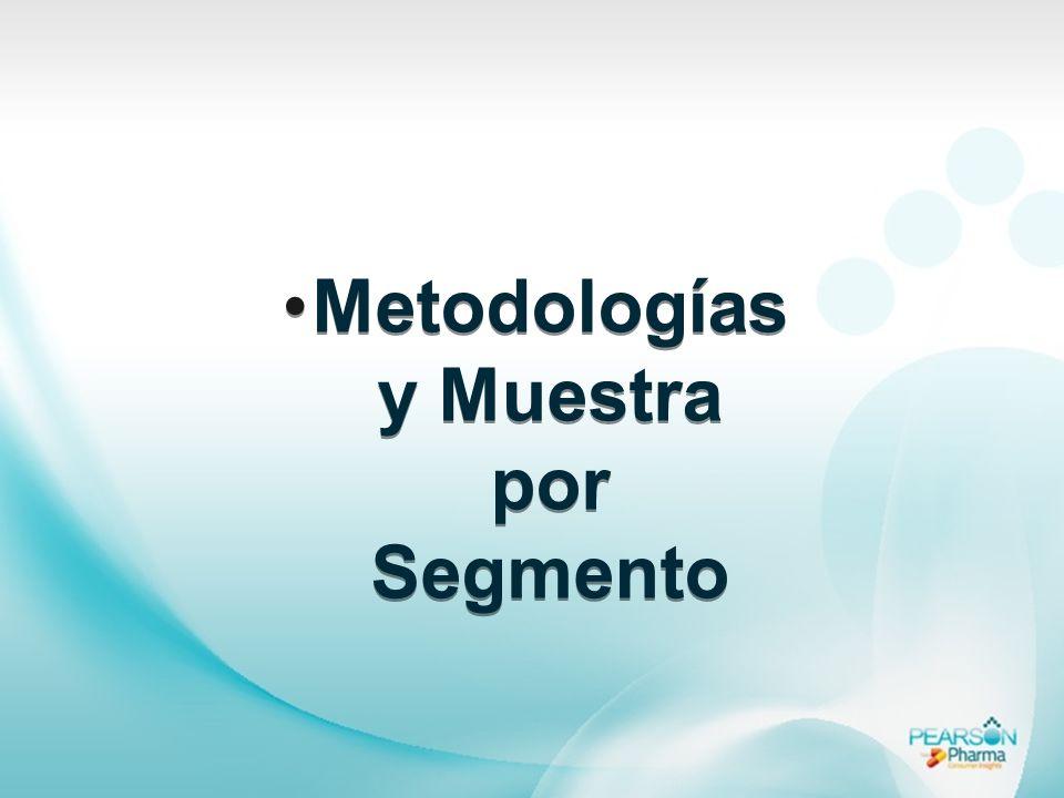 Metodologías y Muestra por Segmento