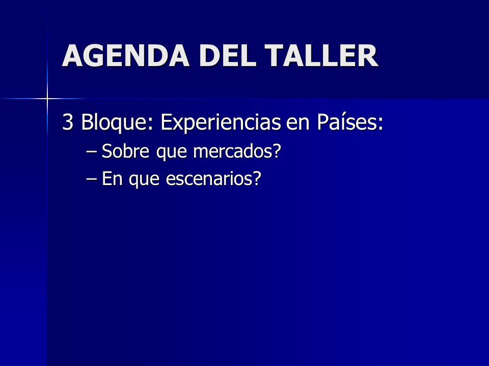 AGENDA DEL TALLER 3 Bloque: Experiencias en Países: –Sobre que mercados –En que escenarios