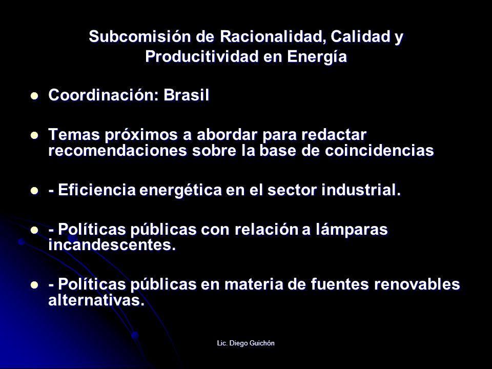 Lic. Diego Guichón Subcomisión de Racionalidad, Calidad y Producitividad en Energía Coordinación: Brasil Coordinación: Brasil Temas próximos a abordar