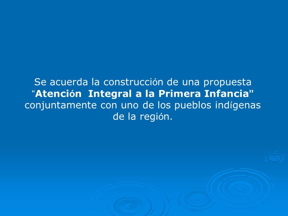Se acuerda la construcci ó n de una propuesta Atenci ó n Integral a la Primera Infancia conjuntamente con uno de los pueblos ind í genas de la regi ó