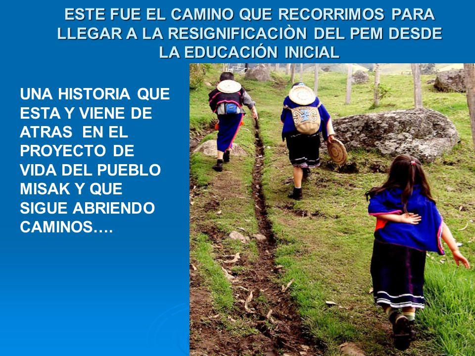 Aquí nos articulamos …2.000-2002 Alianza cabildo de Guambia- UNICEF, grupo GEIM de la universidad del cauca.