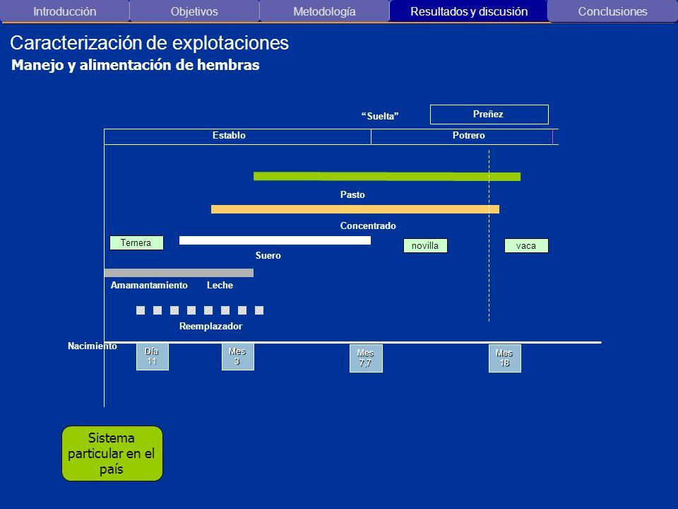 Introducción ObjetivosMetodología Resultados y discusión Caracterización de explotaciones Conclusiones Manejo y alimentación de hembras Día 11 Mes 3 M