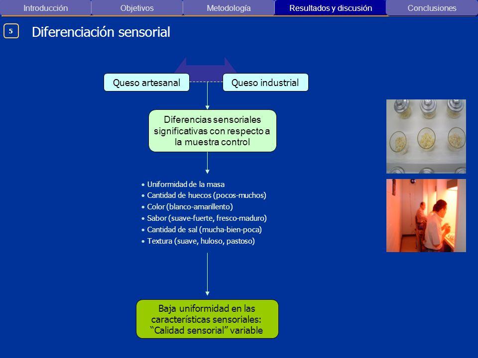 Introducción ObjetivosMetodología Resultados y discusión Diferenciación sensorial Conclusiones Queso artesanalQueso industrial Diferencias sensoriales