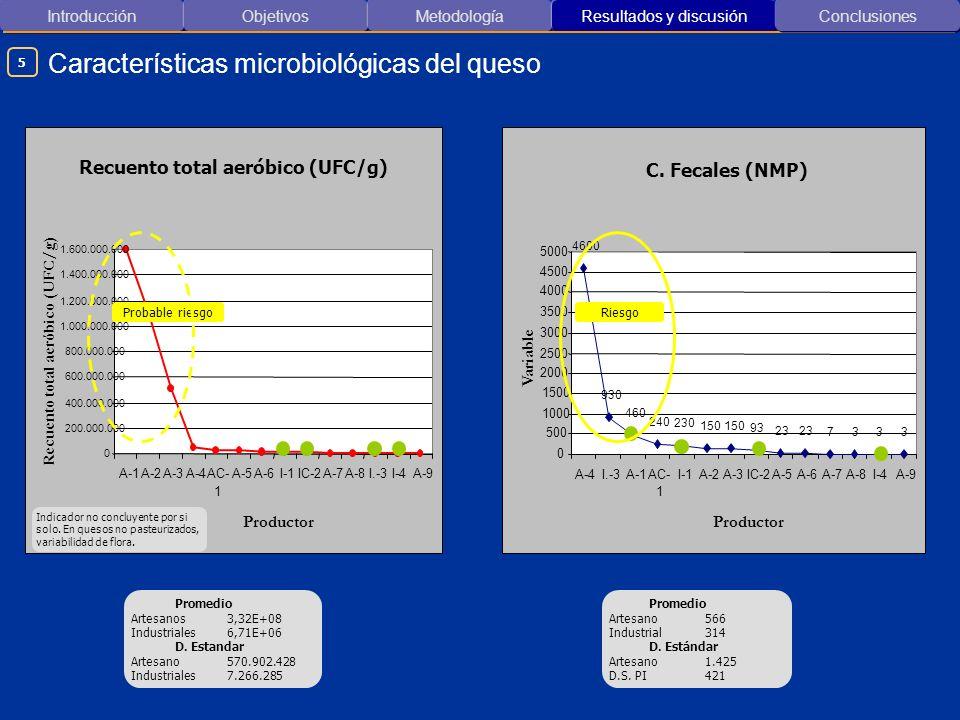 Introducción ObjetivosMetodología Resultados y discusión Características microbiológicas del queso Conclusiones 5 0 200.000.000 400.000.000 600.000.00