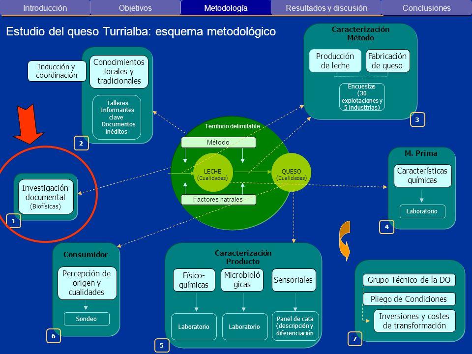 Introducción ObjetivosMetodología Resultados y discusión Características microbiológicas del queso Conclusiones 5 0 200.000.000 400.000.000 600.000.000 800.000.000 1.000.000.000 1.200.000.000 1.400.000.000 1.600.000.000 A-1A-2A-3A-4AC- 1 A-5A-6I-1IC-2A-7A-8I.-3I-4A-9 Productor Recuento total aeróbico ( UFC / g ) Probable riesgo Indicador no concluyente por si solo.