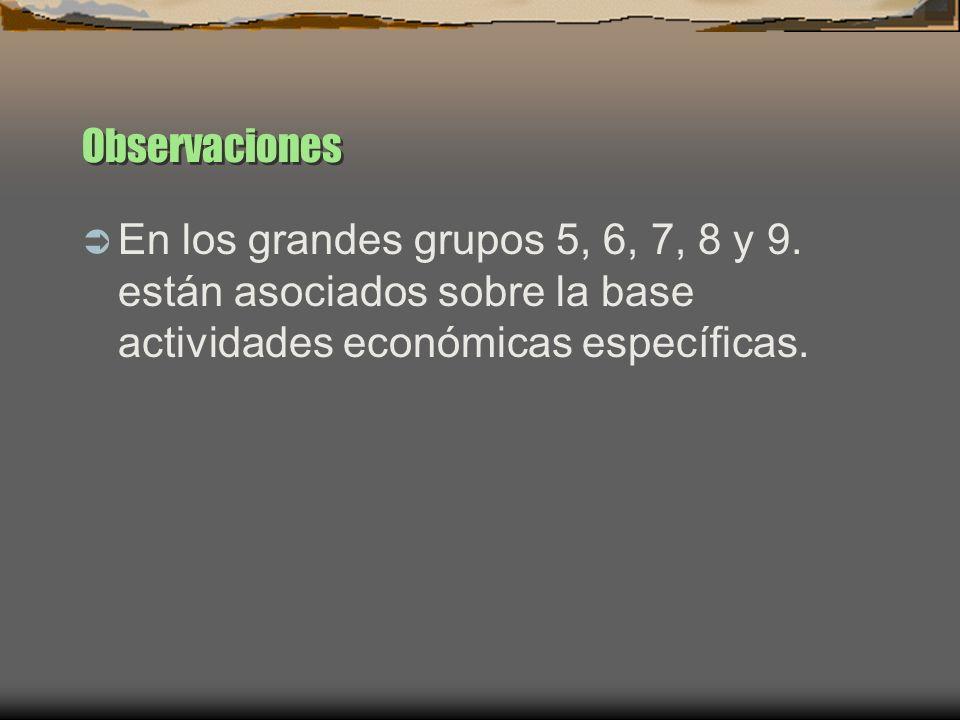 Observaciones En los grandes grupos 5, 6, 7, 8 y 9. están asociados sobre la base actividades económicas específicas.