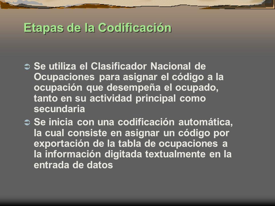 Etapas de la Codificación Se utiliza el Clasificador Nacional de Ocupaciones para asignar el código a la ocupación que desempeña el ocupado, tanto en