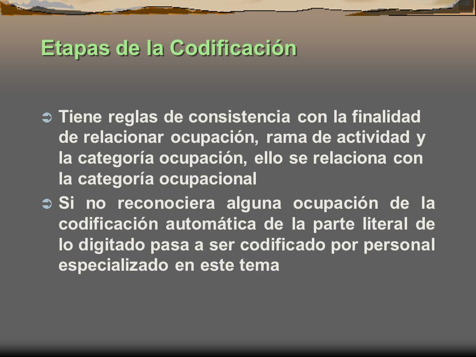 Etapas de la Codificación Tiene reglas de consistencia con la finalidad de relacionar ocupación, rama de actividad y la categoría ocupación, ello se r