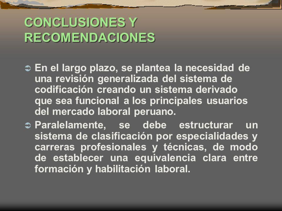 CONCLUSIONES Y RECOMENDACIONES En el largo plazo, se plantea la necesidad de una revisión generalizada del sistema de codificación creando un sistema
