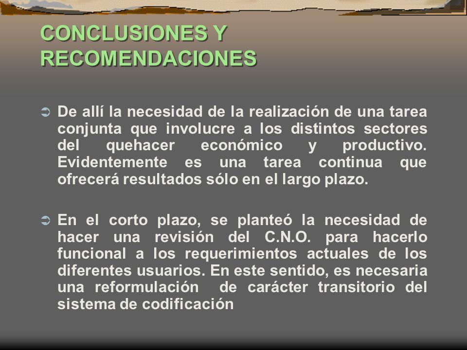 CONCLUSIONES Y RECOMENDACIONES De allí la necesidad de la realización de una tarea conjunta que involucre a los distintos sectores del quehacer económ