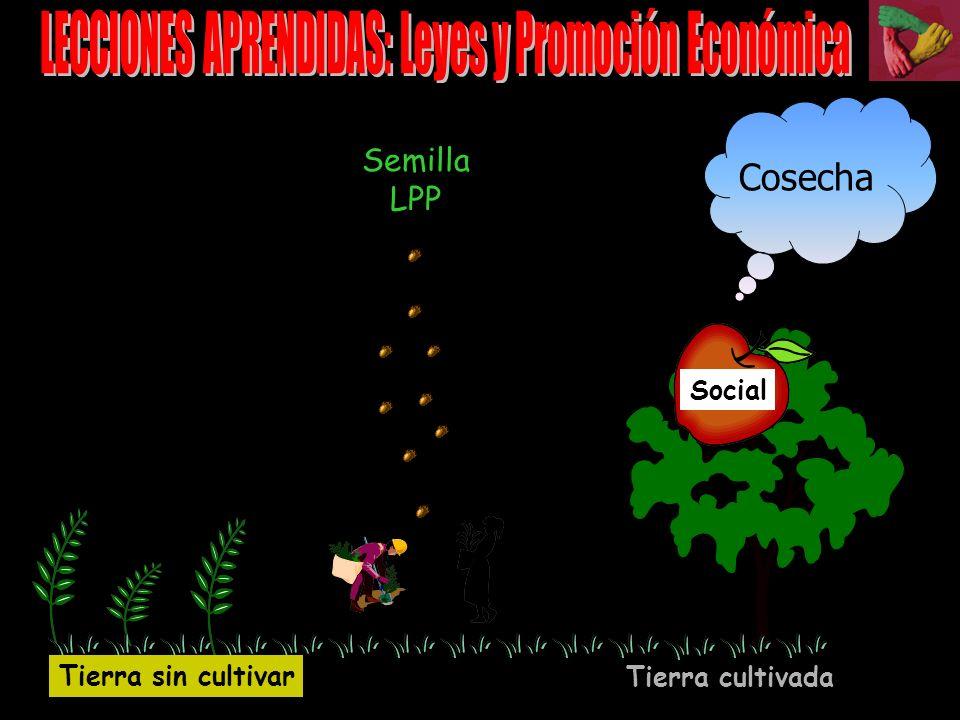 I.Lecciones aprendidas II.Propuestas para construir capital social y DEL ELEMENTOS DE CAPITAL SOCIAL Y DESARROLLO LOCAL